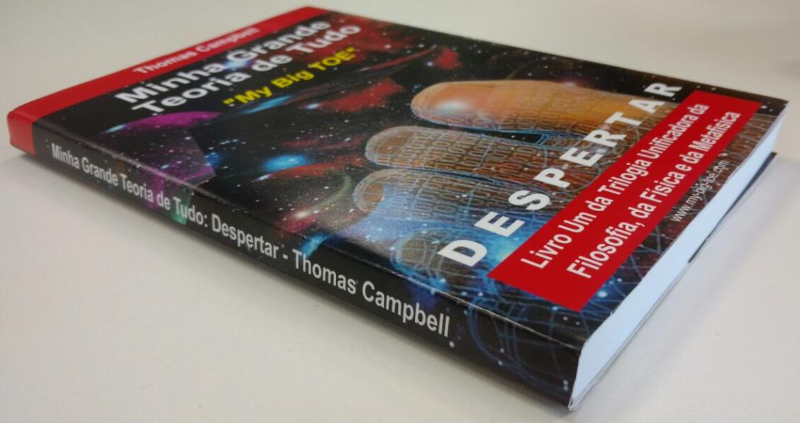 Livro Minha Grande Teoria de Tudo - Despertar